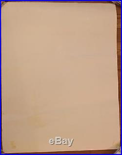 Pink Floyd Rare Original Concert Poster Soldier Field Chicago 1977